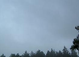 IMG WolkenTypen St